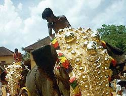 Decorated Elephant of Shiva during Kerala Festival